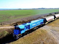 El Ferrocarril Belgrano Cargas y Logística retoma el transporte de vino desde Mendoza