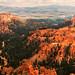 Bryce Canyon-1118 by Steve Bark