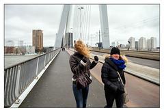 Rotterdam Dyxum meet, February 9 2014