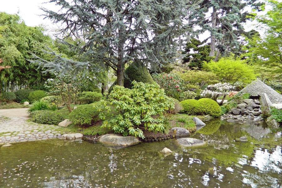 Jardin japonais Albert Kahn (3)