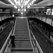 U-Bahn Twitter von Kwewo Kwet