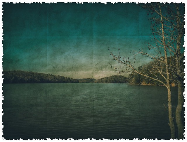 Catawba In green tones