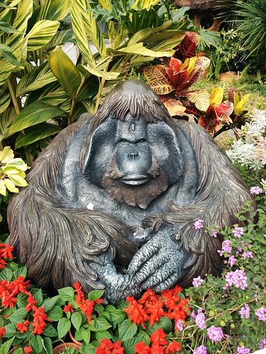 gorilla statue @ botanical gardens