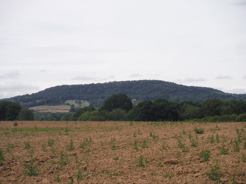 Black Down, from field south of Lurgashall