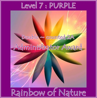 RoN_7Purple_Adm_dbl