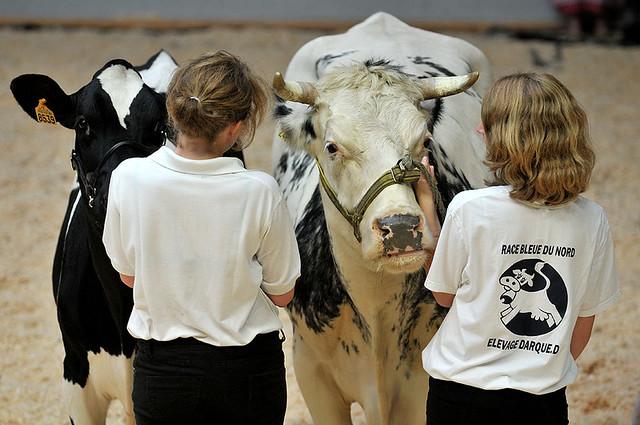 fete du lait le Quesnoy  DSC_9195m