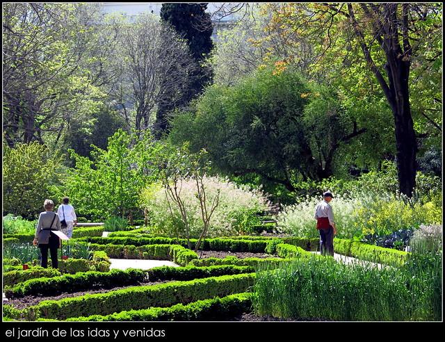 Jard n bot nico de madrid flickr photo sharing for Jardin botanico madrid conciertos