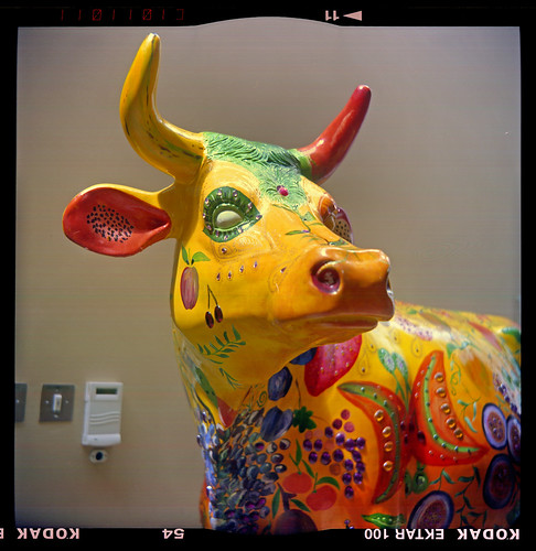 decorated cow by pho-Tony