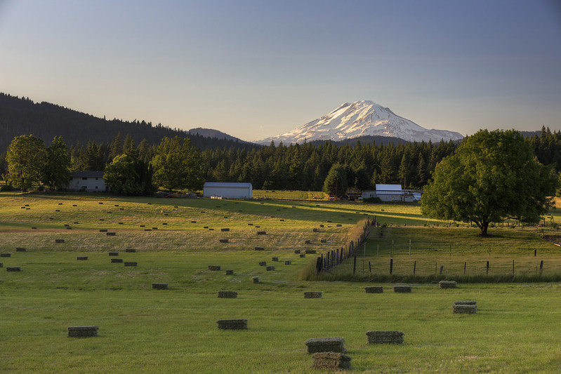 mt adams pastoral (white salmon)