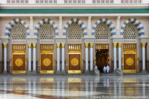 DSC_9140-100 by ArabianLens.com