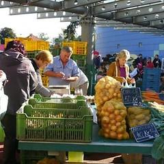 Český farmářský trh (Klánovice)