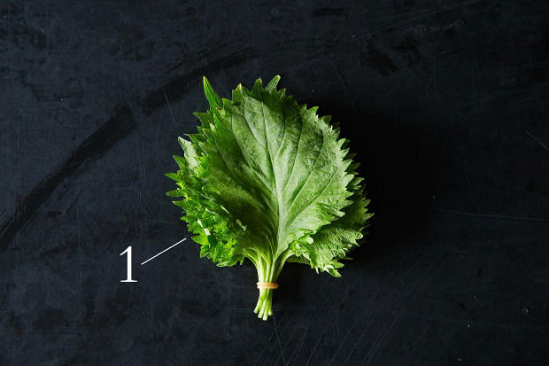 Get Down & Dirty with Shiso, from Food52
