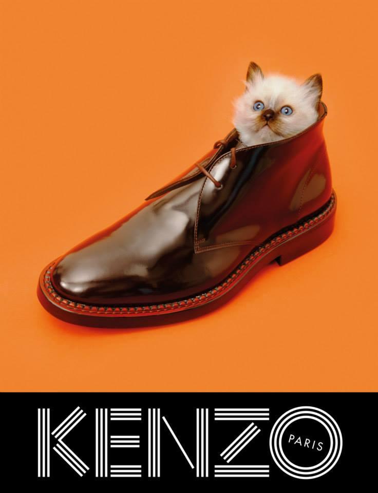sean-opry-rinko-kikuchi-for-kenzo-fall-winter-2013-2014-campaign-by-pierpaolo-ferrari-4