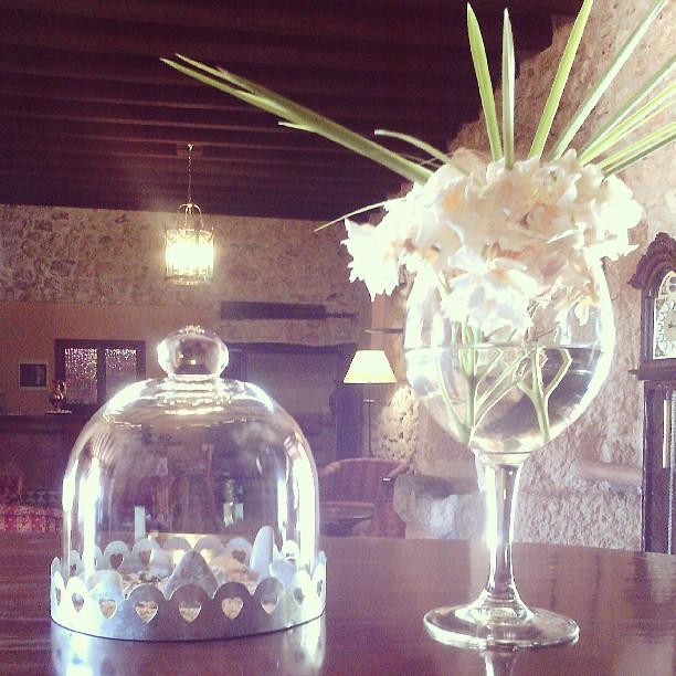 #sabassarotja #laccentnou #mallorca #flower #stone #rock #rockring #ring #glassdome