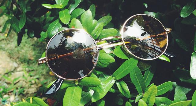 dresslink sunglasses