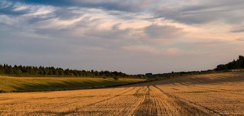 light sunset england sky landscape nikon skies sundown farm farming gloucestershire lee shade gbr thecotswolds leefilters condicote nikkor2470f28 nikond800e