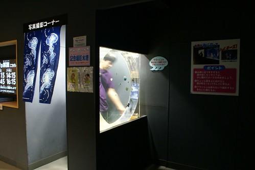 加茂水族館の旅
