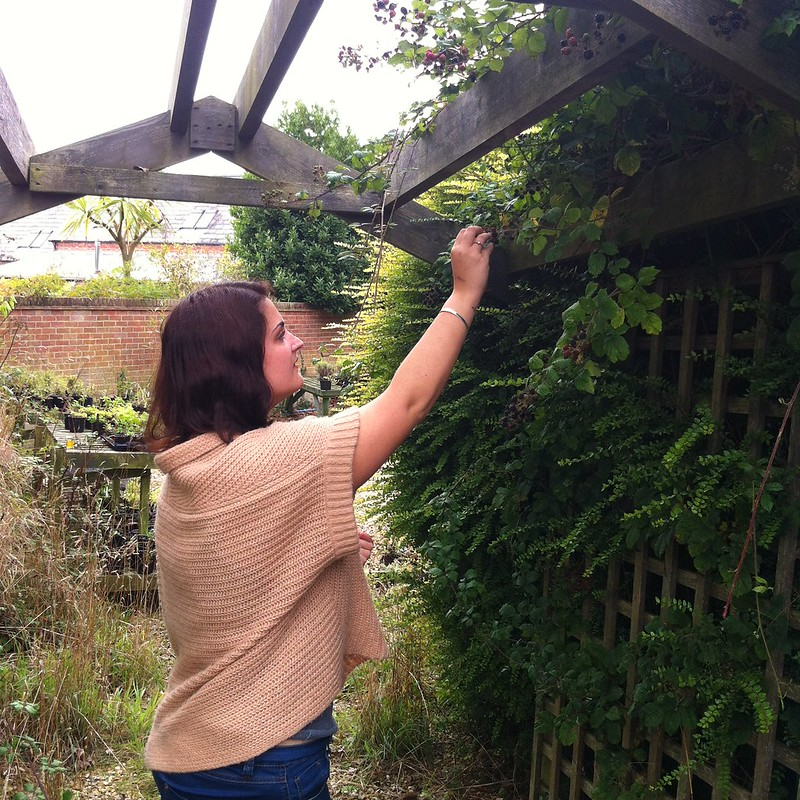 braxton gardens