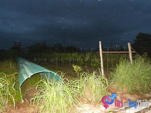 Bacolod-OA-GirlandBoyThing 128