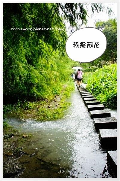 雲山水 (25)