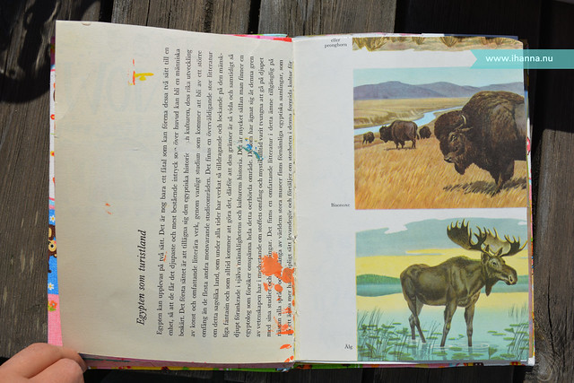 Art Journal Elk Page Before