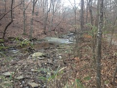 Sope Creek