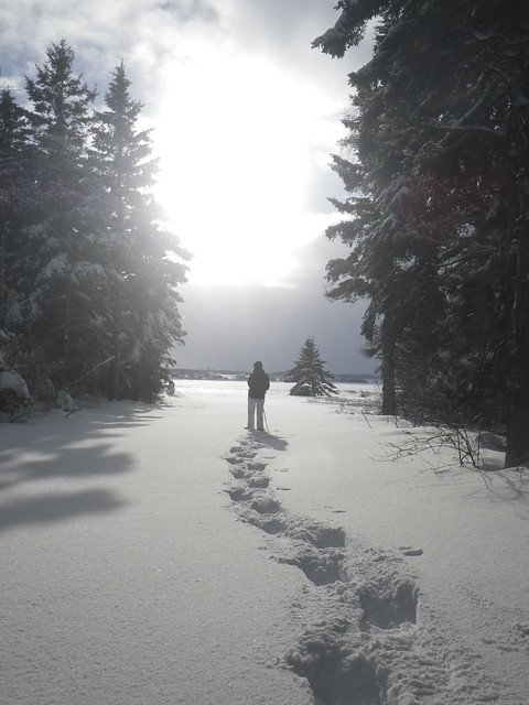 Christmas Day Snowshoe Wander