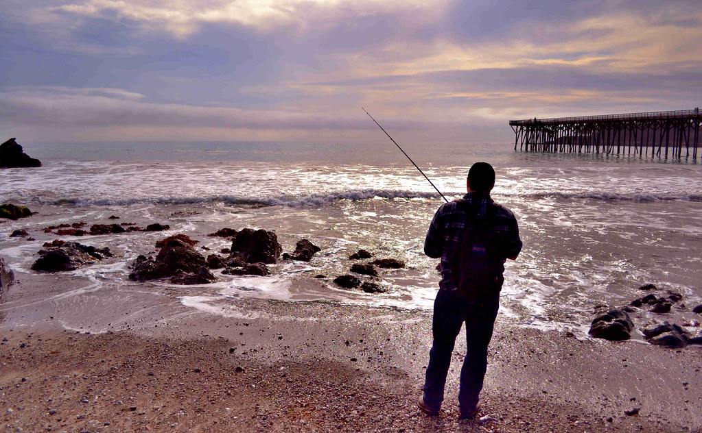 The impractical fishermen raising sportsmen surf fishing for Surf fishing san diego