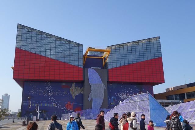 海遊館(KAIYUKAN)