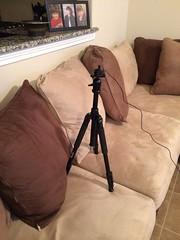 Camera Roll-155