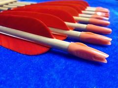 cedar arrows (2)