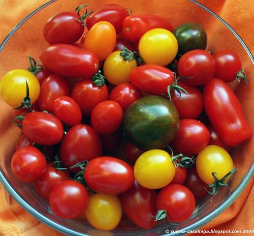 Tomatenmix klein copyr
