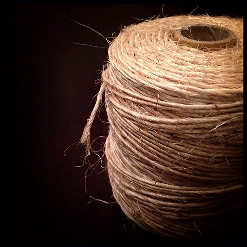 #fmsphotoaday May 1 - Begins with J. Jute!