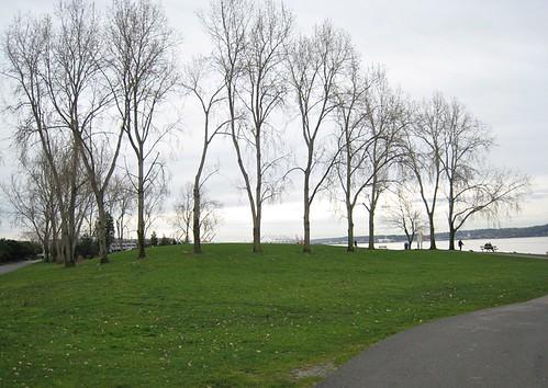 Myrtle Edwards Park