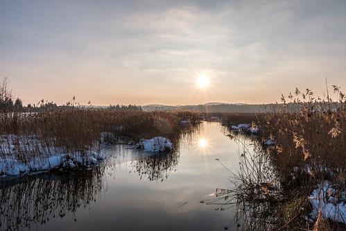 winter sunset sun reflection reed landscape sonnenuntergang landschaft sonne reflexion schilf canoneos70d