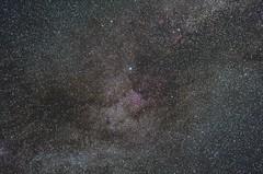 Cygnus widefield - Nikkor 50mm F1.8