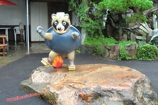 CIMG1169 Tanuki chamuskao en el  Infierno Kamado Jigoku (Beppu) 13-07-2010 copia