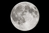Full Flower Moon of May by Kevin's Stuff