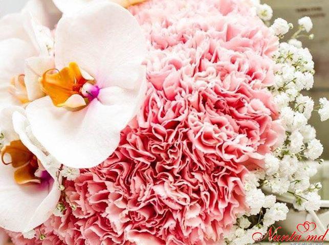 Flower Land > Foto din galeria `Bucheţele by Flower Land`