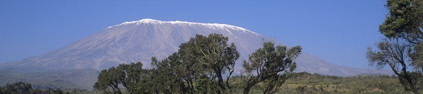 Kilimanjaro-Trekking Rongai-Route. Foto: Archiv Härter.