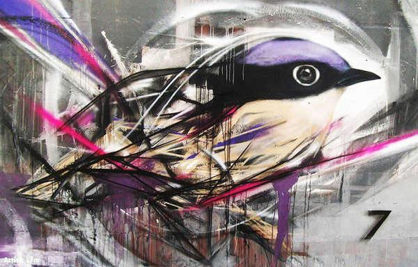 graffiti de aves