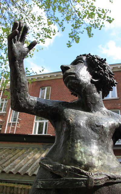 """Kamerood Sesteg"" - stadspark Leuven"
