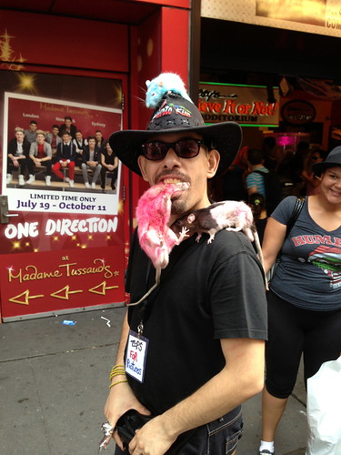 Rat man, Times Square