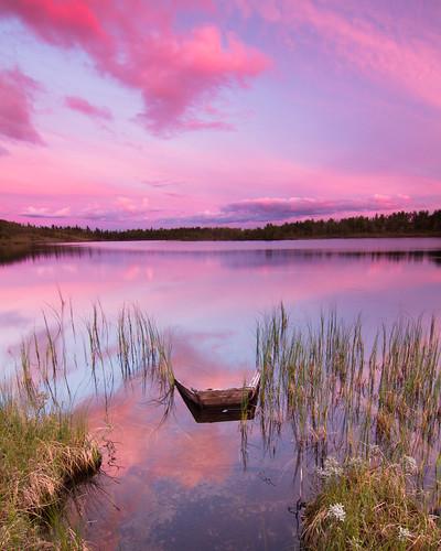 pink sunset lake reflection water grass clouds landscape boat weeds day rosa sunken vann solnedgang buskerud såtefjell pwpartlycloudy midtredjupetjørn