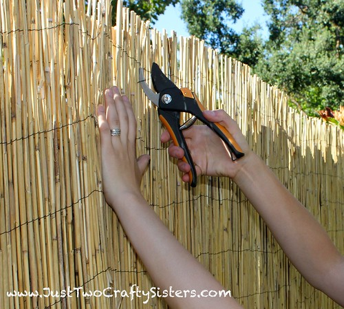 Bamboo Privacy Fencing-A cheap way to dress up an old fence