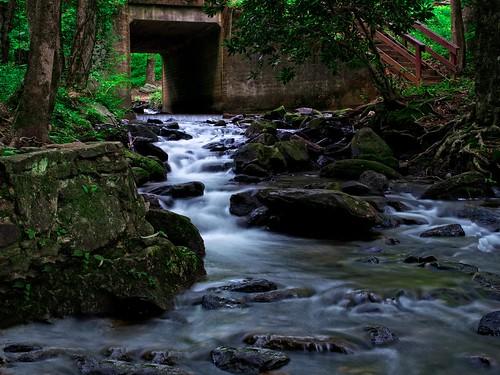 water stairs ga climbing waterfalls runningwater dawsonville slowshutterspeed amicalolafall olympusomd flickr12days