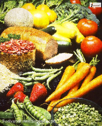 Photograph still life of samples of healthy and nutritious foods
