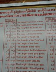 Reclining Buddha measurements