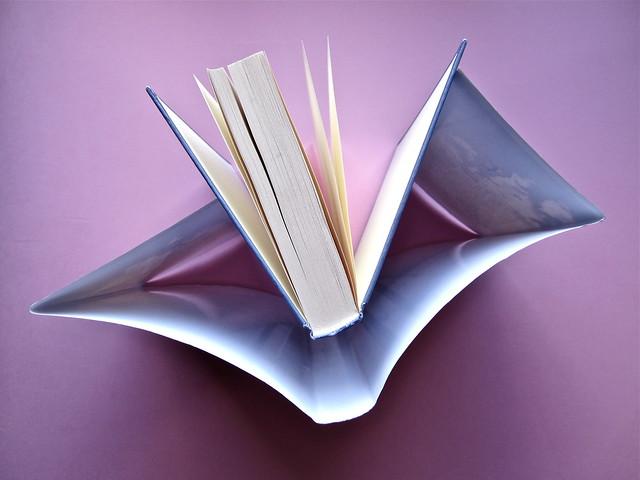 David Levithan, ogni giorno. Rizzoli 2013. Progetto grafico di copertina © Adam Abernethy. Taglio superiore di sovracoperta e copertina (part.), 1