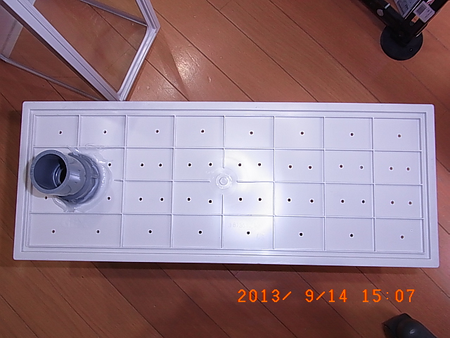 RIMG0004